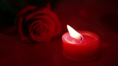 candlerose
